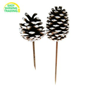 large pine cone HOPC002
