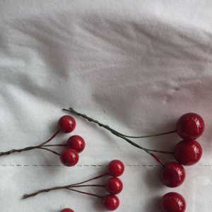 Small Red Berry Picks
