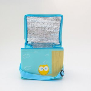 small size cooler bag